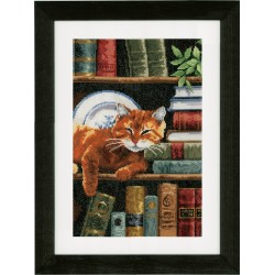 Cat on Bookshelf - Counted...