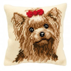 Yorkshire Terrier - Chunky...