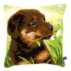 Rottweiler Puppy - Chunky...