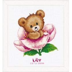Flower Teddy : Birth Record...