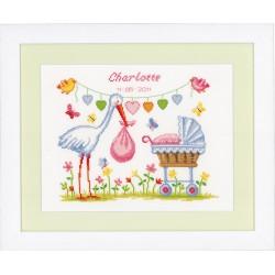 Stork & Pram: Birth Record:...